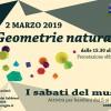 I sabati del museo: geometrie naturali